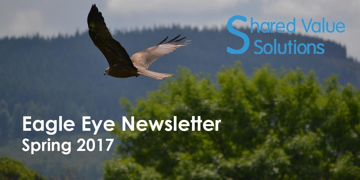 Eagle Eye Header Image - Nov 2017.jpg