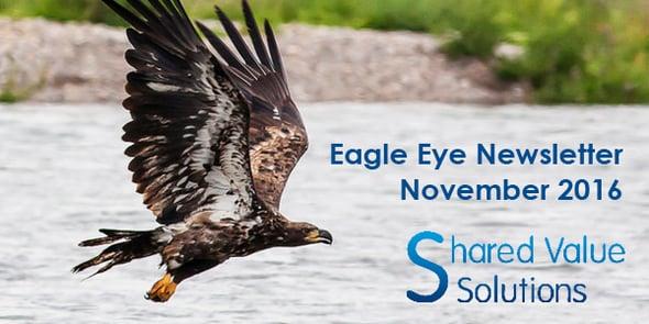 Eagle Eye Header Image.png
