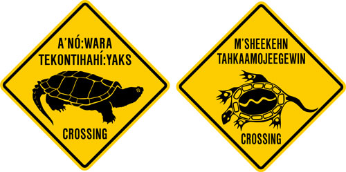 Mohawk-turtle-signs