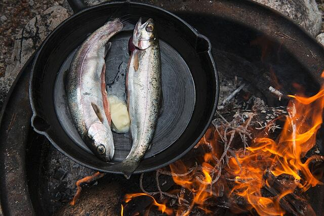 Indigenous Commercial Fisheries - the Next Reconciliation Revolution