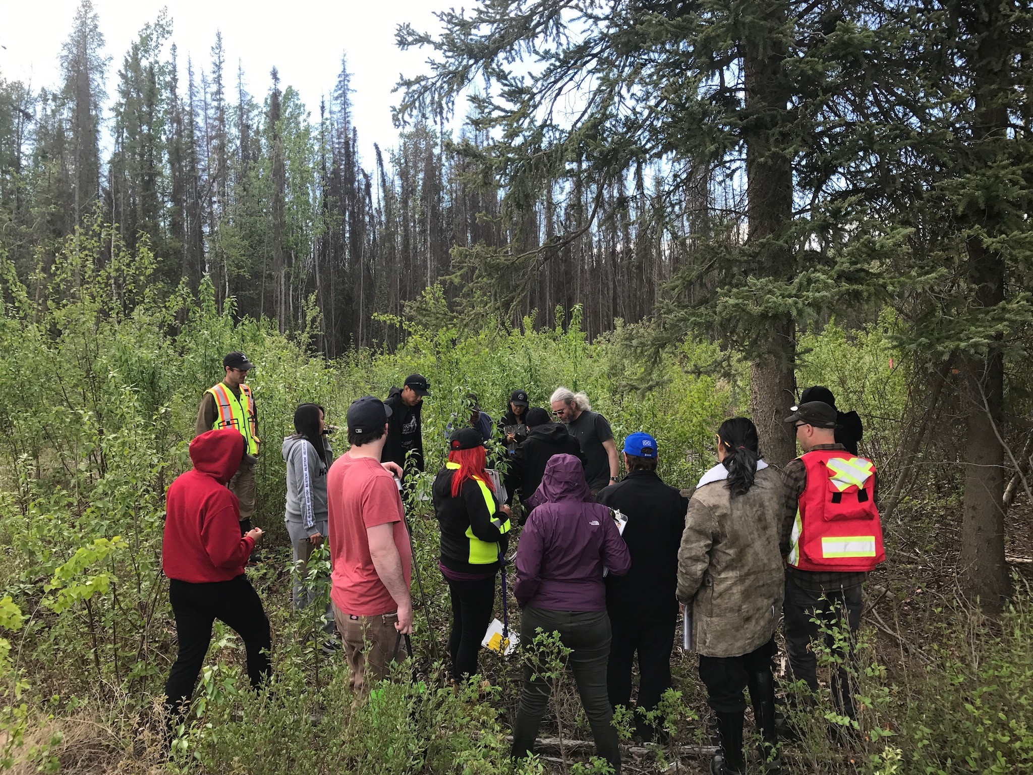 Dehcho Pipeline Guardians take part in wildlife protection training for the Line 21 oil pipeline project with SVS environmental specialists