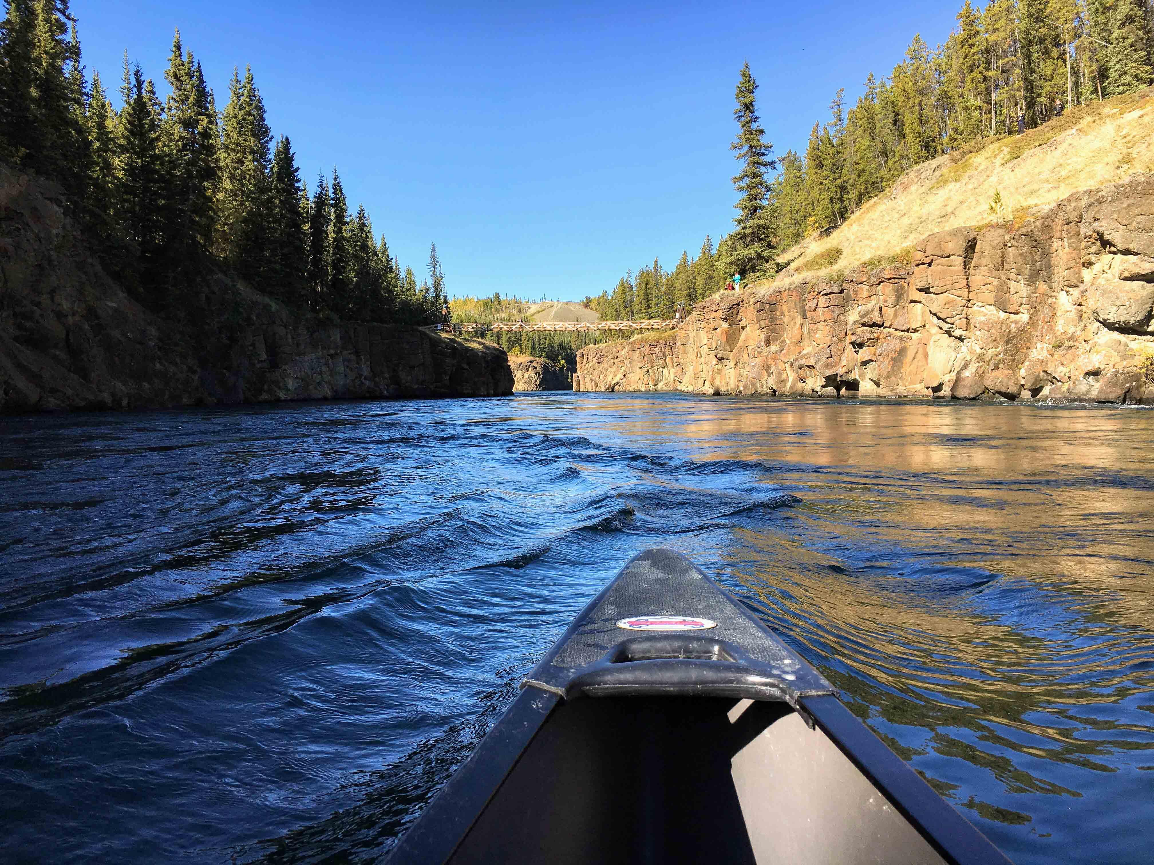 Navigating the Yukon River near Whitehorse